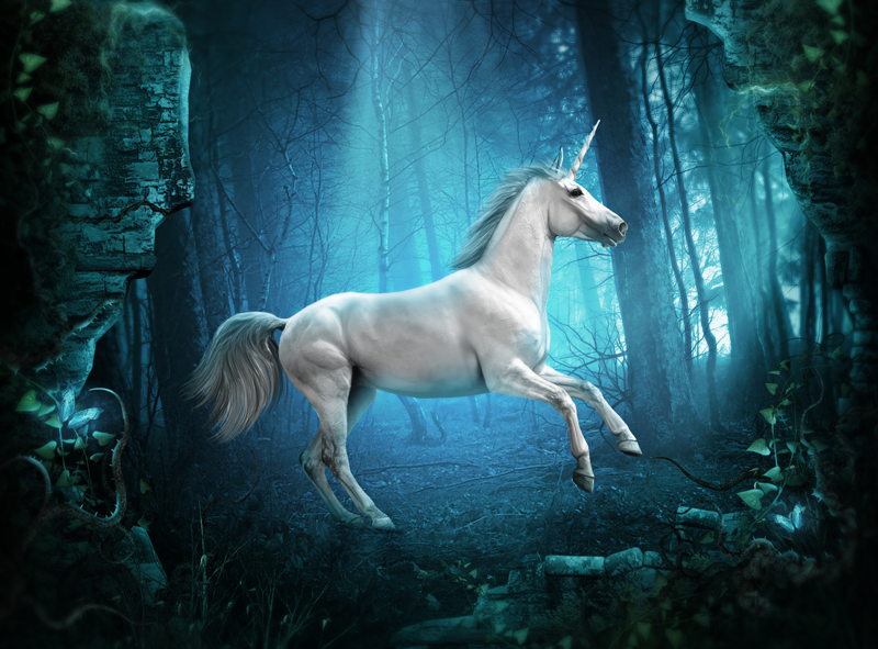 the_unicorn_by_whendell-d4ld7xi.png