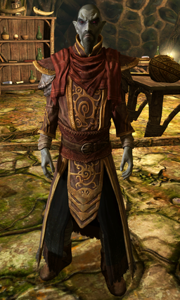 256px-Master_Neloth_Dragonborn.png