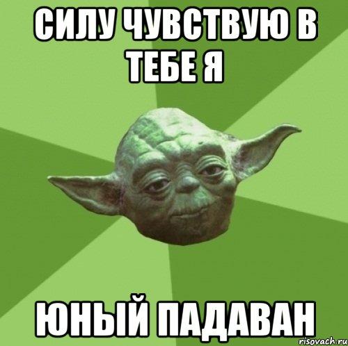 master-joda_23693858_orig_.jpg