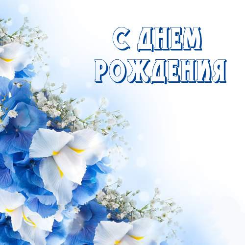 c01dd6bc91b26ec85f87bcfc64abcbcf_vpija.jpg