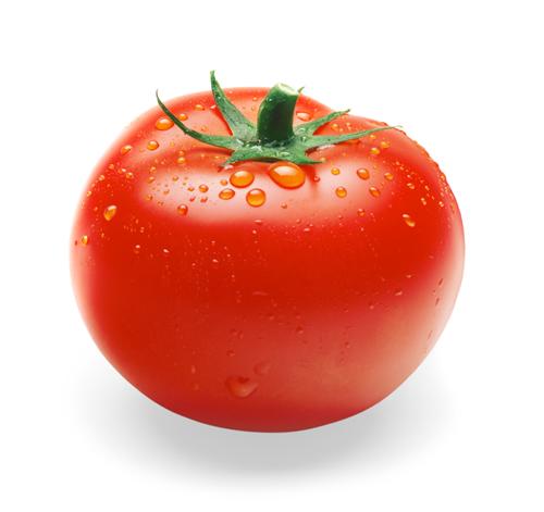 75072713_tomatoisp1.jpg