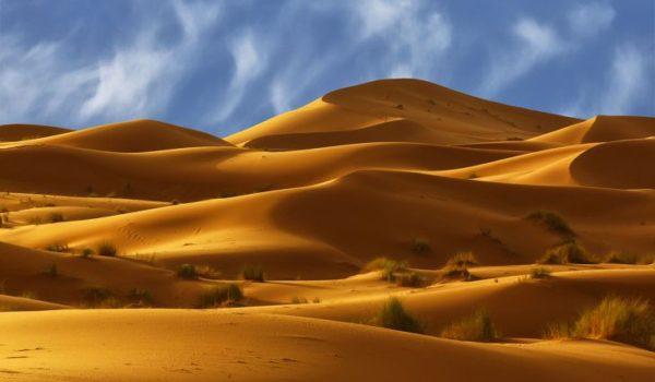 interesnie-fakti-o-pustyne-sahara-e1543840615156.jpg