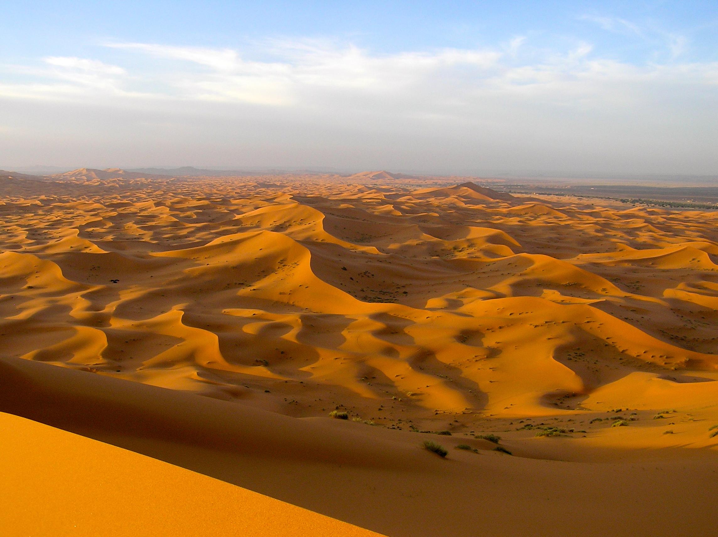 Sahara-Desert-t.jpg