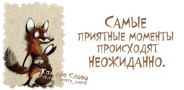 yTbiTfSbjMM.jpg