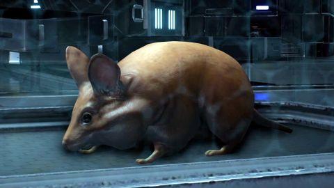 Mass-Effect-Andromeda-Pets.jpg