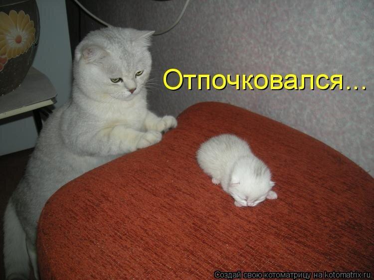 0_3937f_3fd589c3_XL.jpg