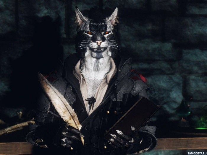 igra_The_Elder_Scrolls_khajiit_29753.jpg