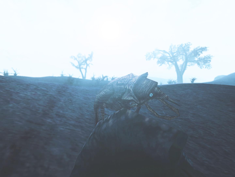 Morrowind-2019-08-04-16.39.04.6221.png