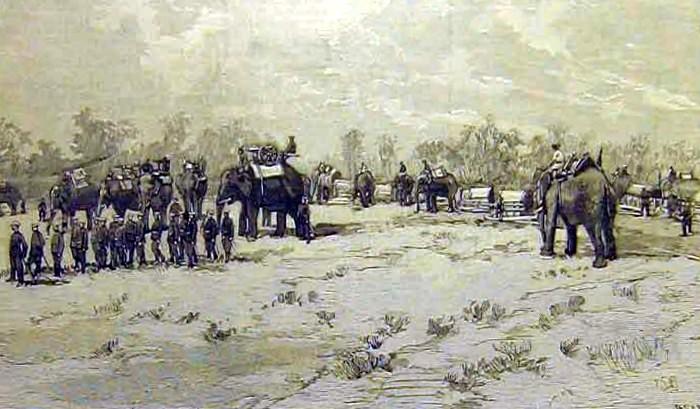 Siamese_Elephant_Mounted_Artillery_in_La