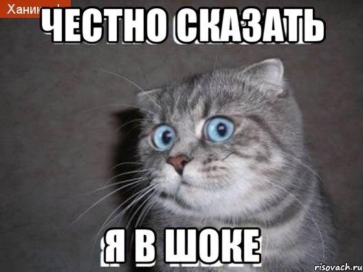 chestno-skazat-ya-v-ahue_13946128_orig_.