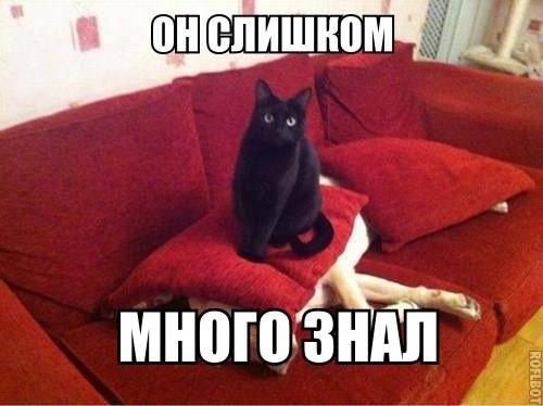 dobryi_vecher.jpg