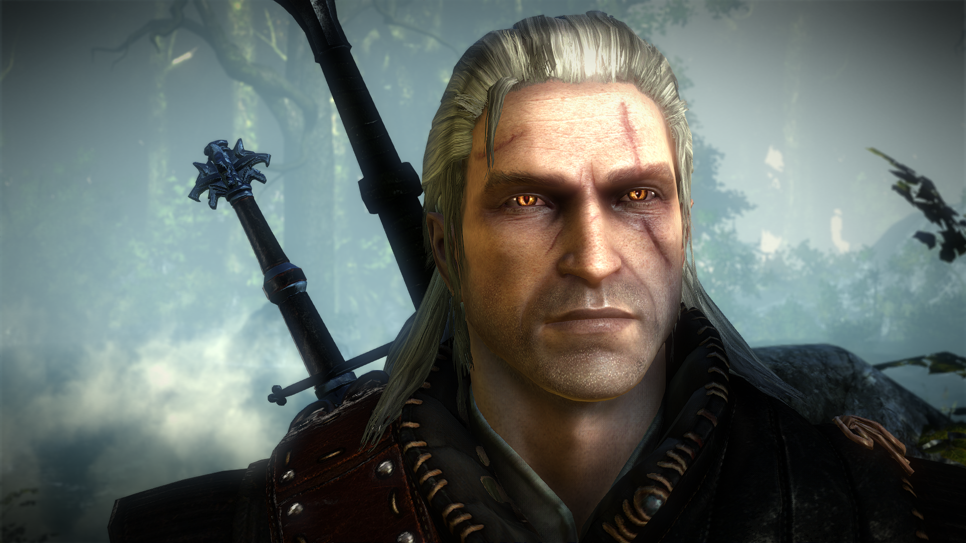 1791822-witcher2201105191011188.png