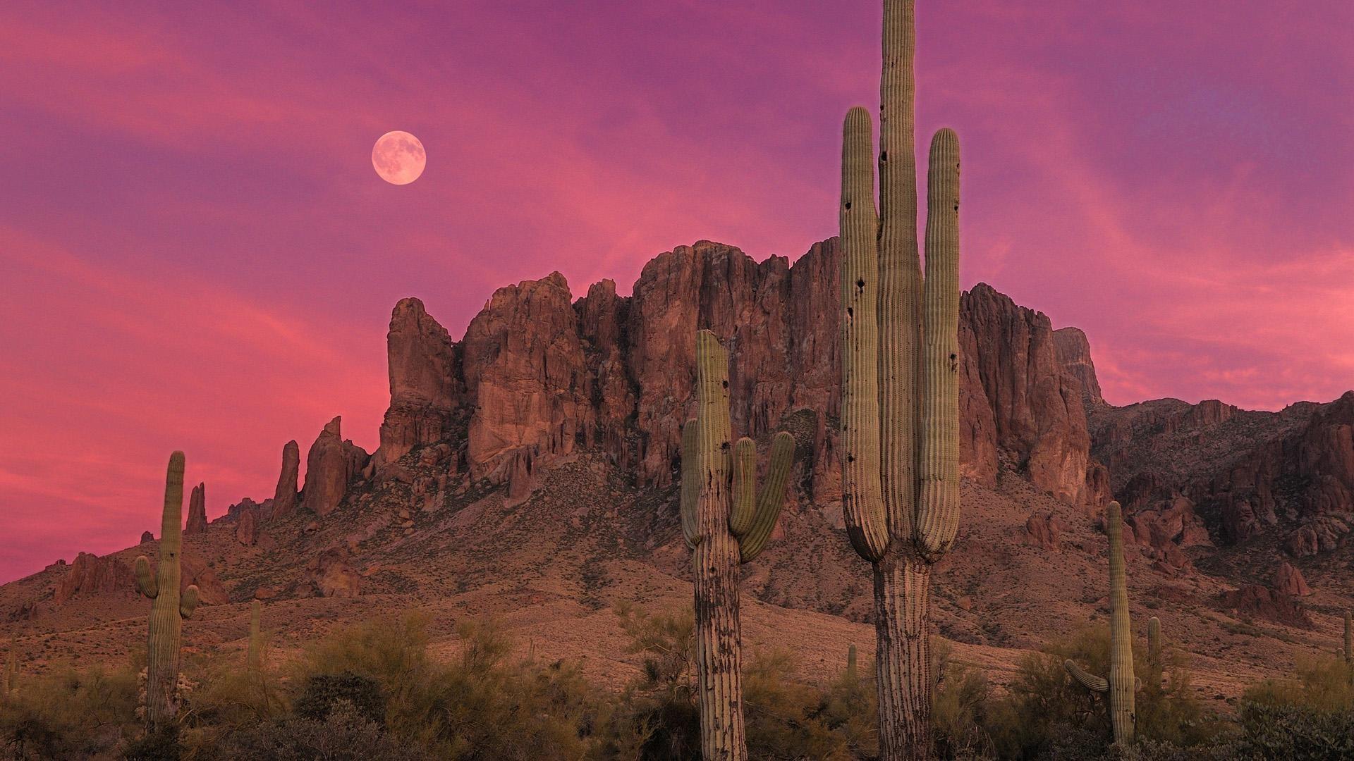 1499614-amazing-arizona-hd-wallpaper-1920x1080-for-mac.jpg