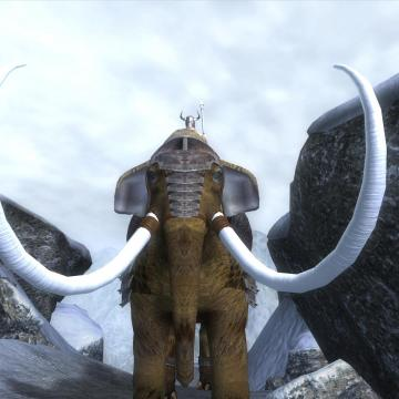Mammoth Mounts