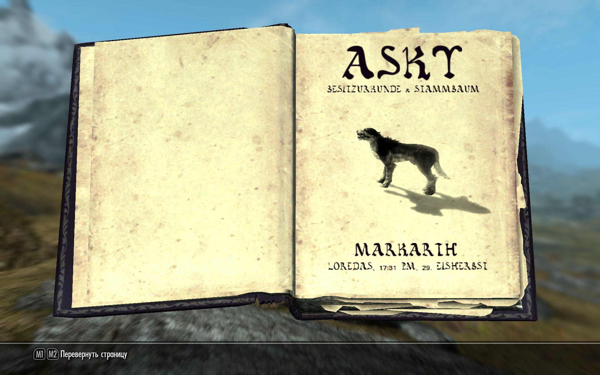 Аски - почти настоящая собака