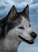 Аватар пользователя Heko