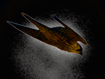 Аватар пользователя Falcon