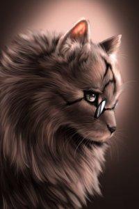 Аватар пользователя Welsharoon