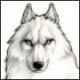 Аватар пользователя WladKargadski