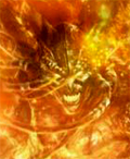 Аватар пользователя Inferno