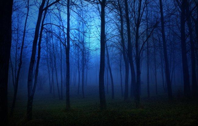 1. Погоня за прошлым - Туманный Альбион.