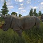 У носорога плохое зрение, но это не его проблема.