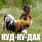 Куд-Ку-Дах