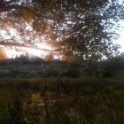 KingdomCome - пейзажи