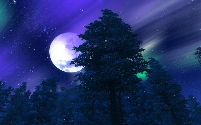 Джеральская ночь