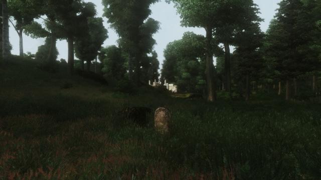 Одинокая могила