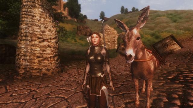 Защитница Сиродила и её корефан