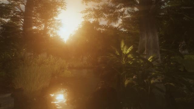 Нежность болот