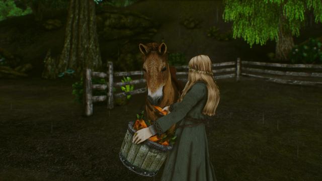 Завтрак для лошадки