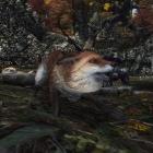 Лисичка-сестричка