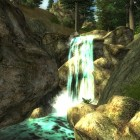Мандрагора у водопада