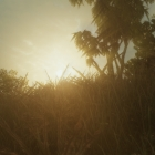 Закат где-то на золотом берегу