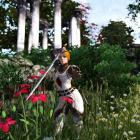 Леди-рыцарь Девяти