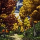 Пейзажи Великого леса