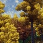 Осенний лес в Сиродиле