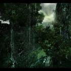 Дождь в Великом лесу