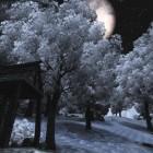 Зима на Старом мосту