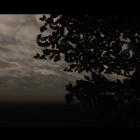 Oblivion 2014 05 12 17 48 40 57
