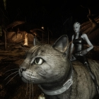 Liara cat rider
