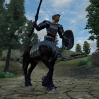 TES Oblivion - игра кентавром