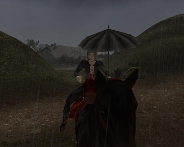 В дождь, на лошади... под зонтом...романтика блин...:)