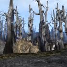 Morrowind порой выдаёт невероятную картинку