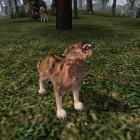 Чумной волк