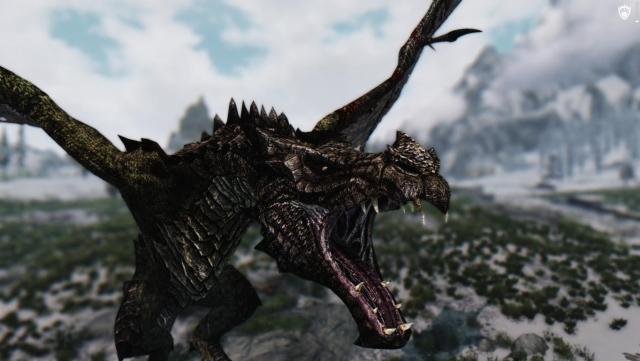 Изловила я злого Dragona