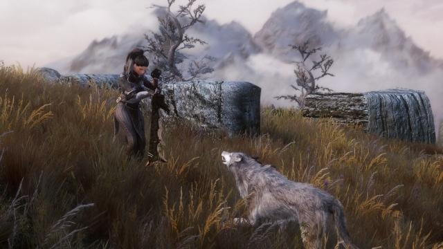 Серый, серый волк