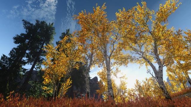 Бесконечная Пора (Осенняя)